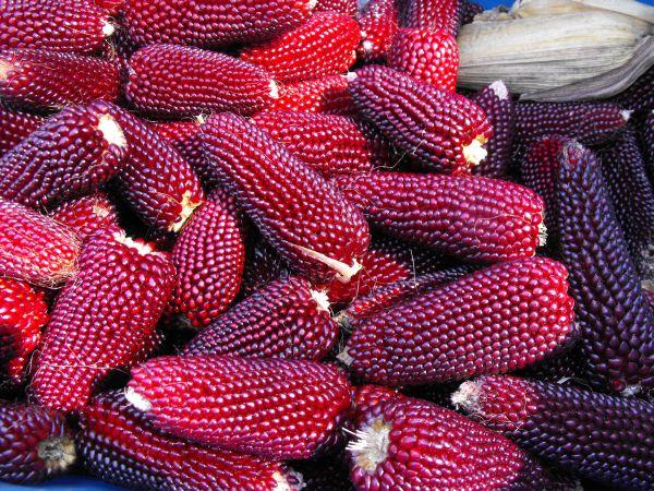 pop-corn capsuna